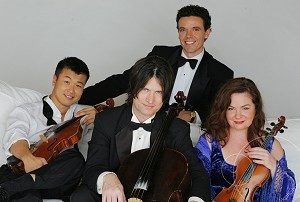 Armadillo String Quartet V